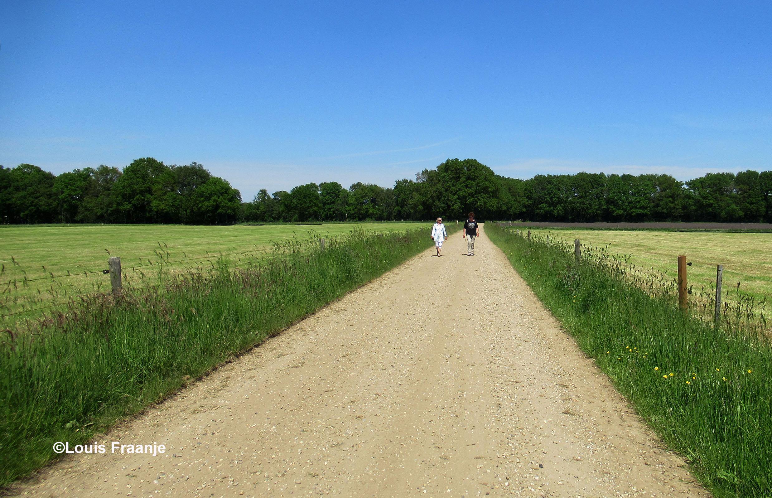 Als we dan uiteindelijk op het Schoolpad terecht zijn gekomen is het einde van de wandeling bijna een feit - Foto: ©Louis Fraanje