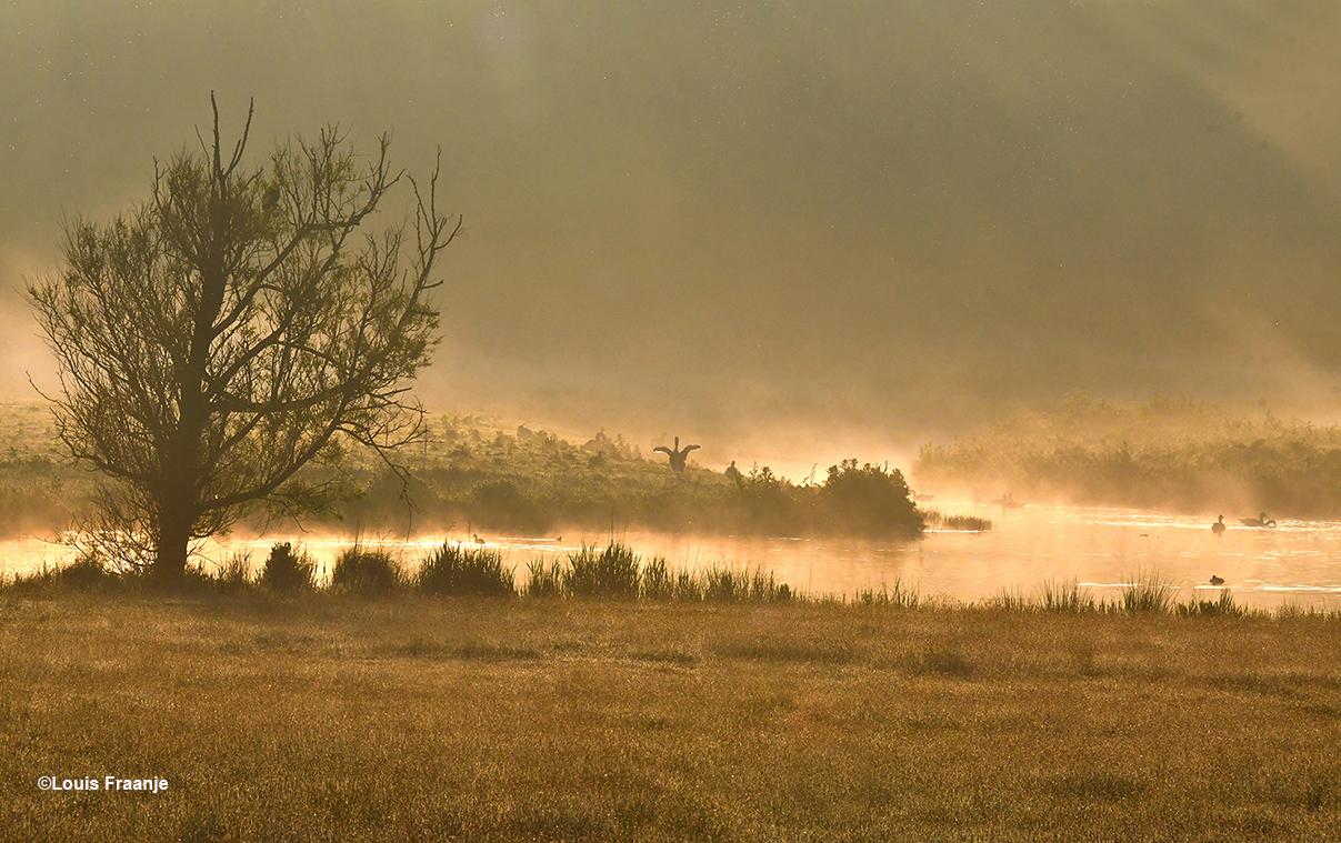 Ochtendgloren met nevelflarden boven het water - Foto: ©Louis Fraanje