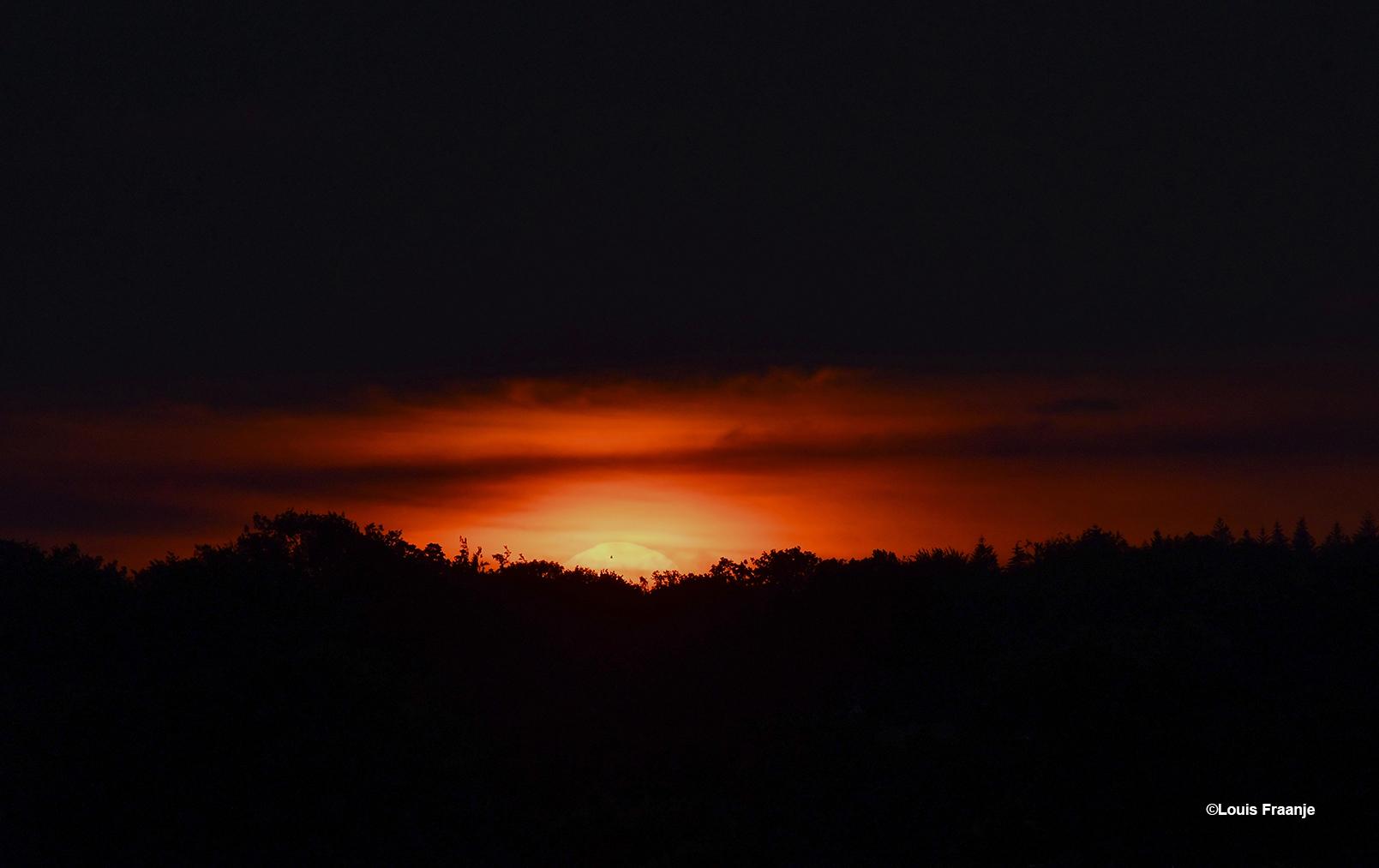 Een bijzondere zonsopkomst boven de bossen van de Veluwe - Foto: ©Louis Fraanje