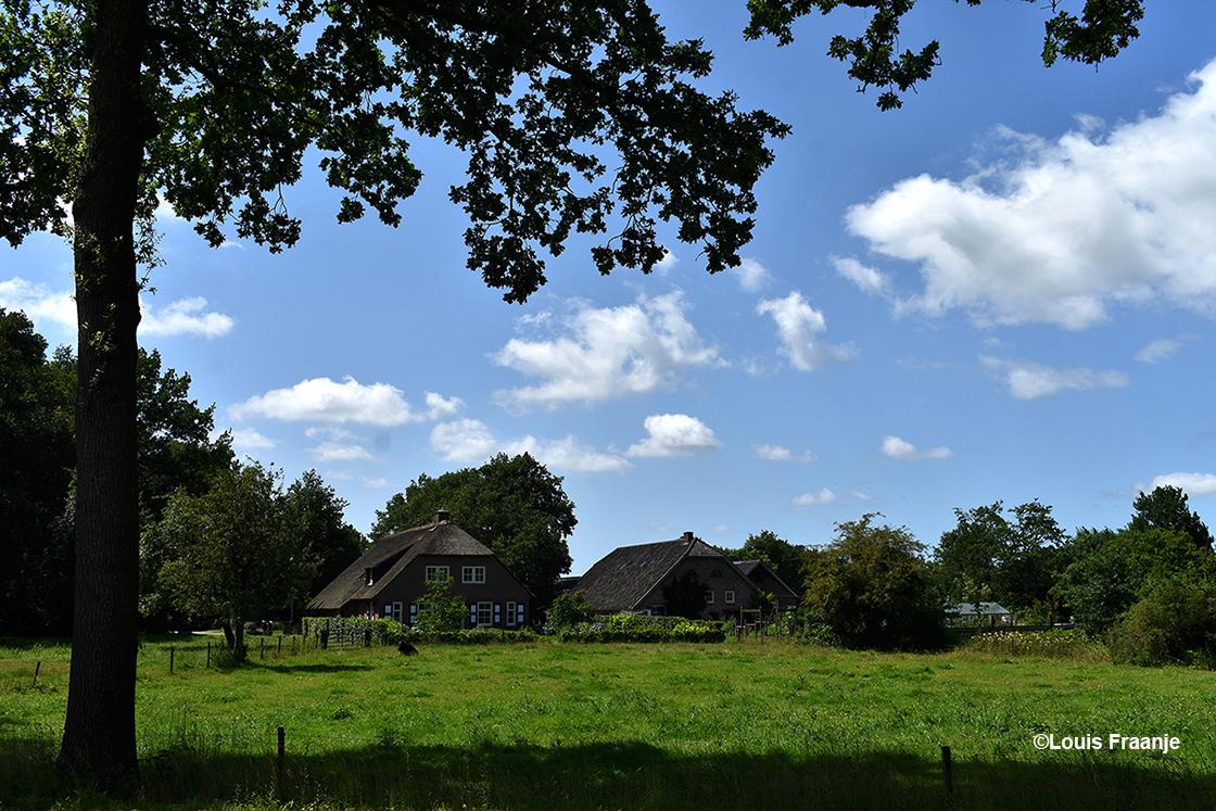 Weer wat verder zien we een prachtige boerderij met schuren omringd door oude bomen - Foto: ©Louis Fraanje