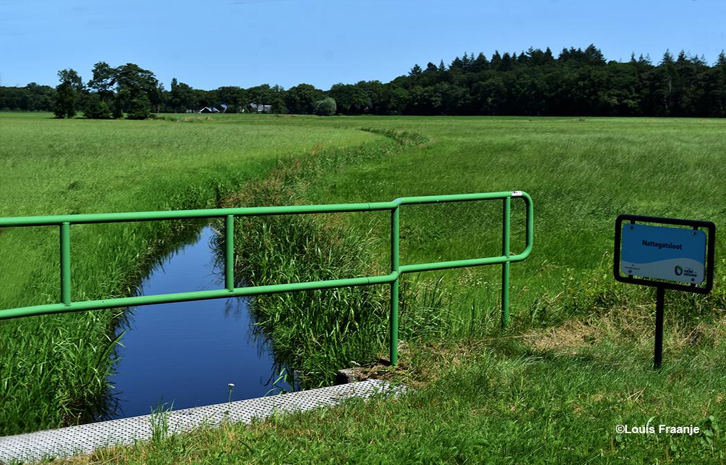 Aan de naam van deze sloot zit een 'luchtje' of een 'verhaaltje' denk je bij het lezen. Namelijk 'Nattegatsloot', maar het heeft misschien wel met de natuurlijke loop van het water te maken? - Foto: ©Louis Fraanje