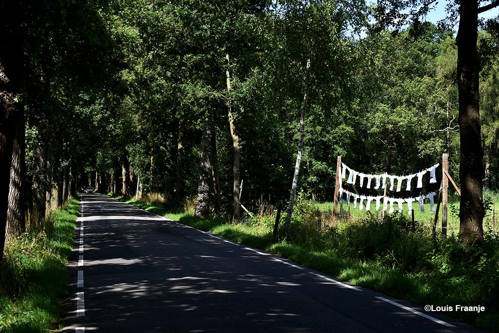 """Wat krijgen we nu weer... een waslijn of zoiets? Nee hoor, dit is plattelandskunst met de welluidende naam """"Platteland Anders"""" ! - Foto: ©Louis Fraanje"""