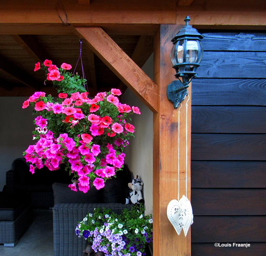 Thuis bij schoonzus Janny een kleurrijke omlijsting, naast het 'bakkie' doen - Foto: ©Louis Fraanje