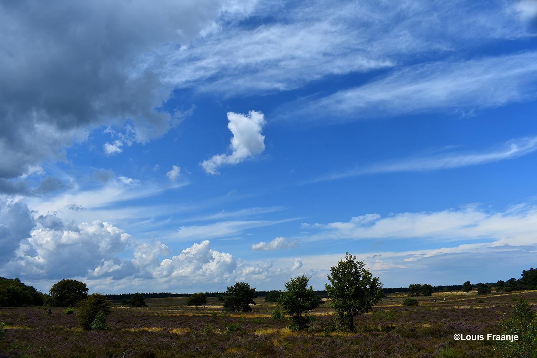 De Noorderheide bij Vierhouten met prachtige wolkenluchten - Foto: ©Louis Fraanje