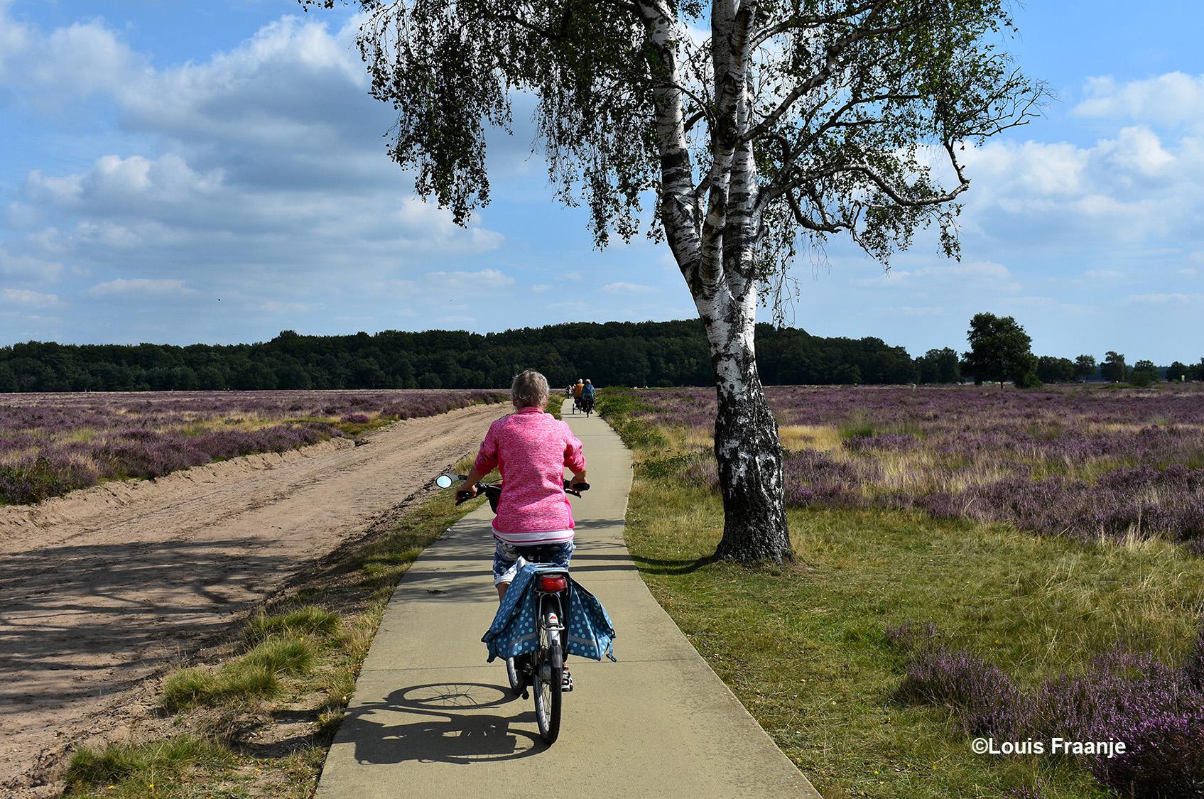 En dan zo'n prachtige eenzame berk langs het fietspad - Foto: ©Louis Fraanje