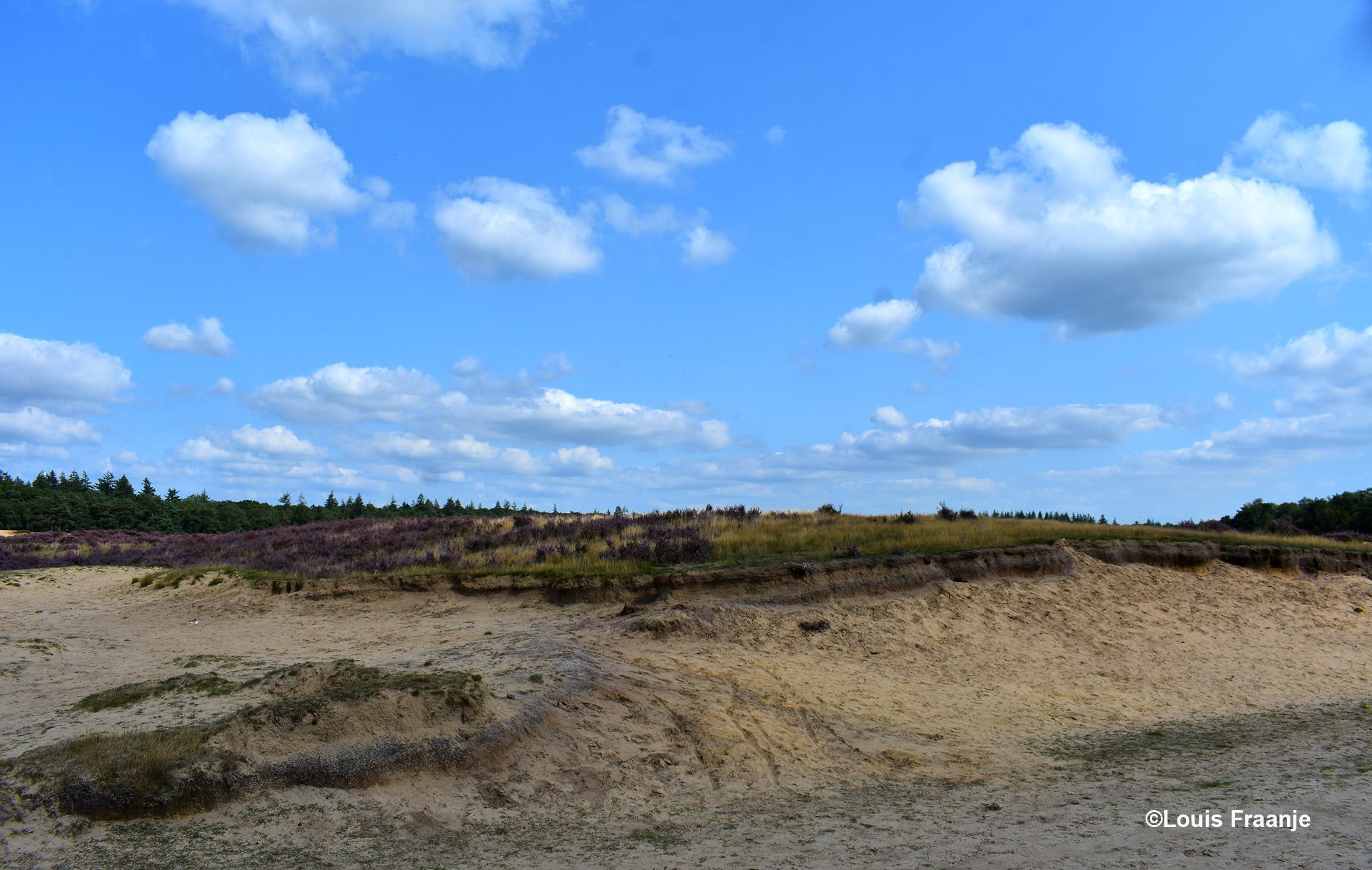 Langs de oude zandweg zien we ook duidelijk de oerbanken, die bloot kwamen te liggen door de wind - Foto: ©Louis Fraanje