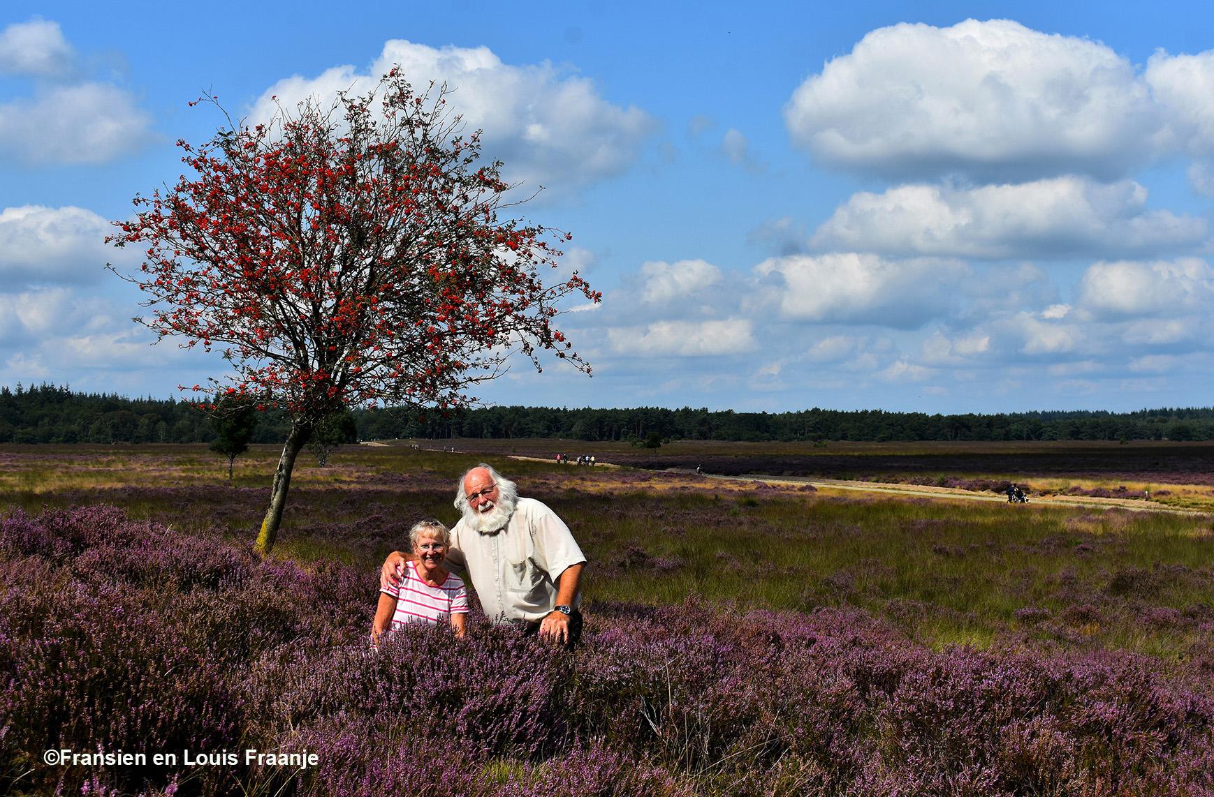 Samen in de bloeiende heide bij de prachtige Lijsterbes - Eigen foto: ©Fransien en Louis Fraanje