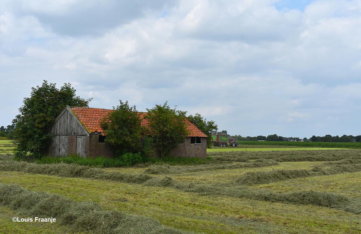 Ook op Zwetselaar zijn de boeren druk aan het hooien - Foto: ©Louis Fraanje