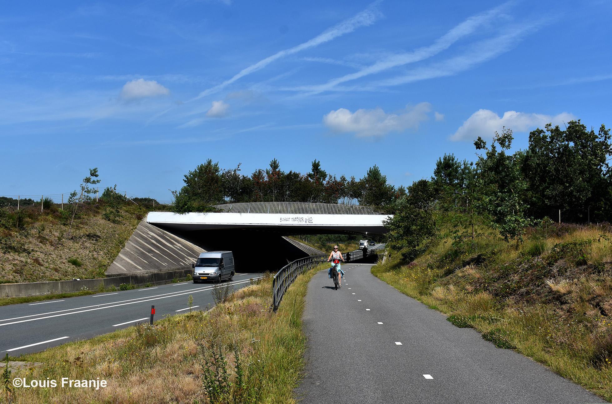 Het ecoduct De Treeker Wissel vanaf de andere kant gezien. Een goede verbinding voor het wild tussen Den Treek en de Leusderheide - Foto: ©Louis Fraanje
