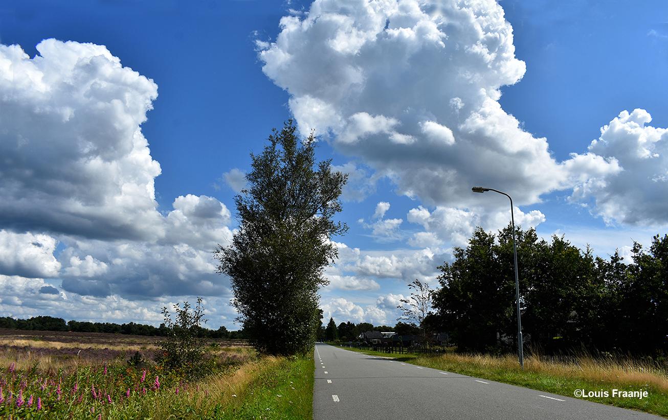 De Middenweg bij Elspeet mag niet ontbreken op deze heidetour - Foto: ©Louis Fraanje