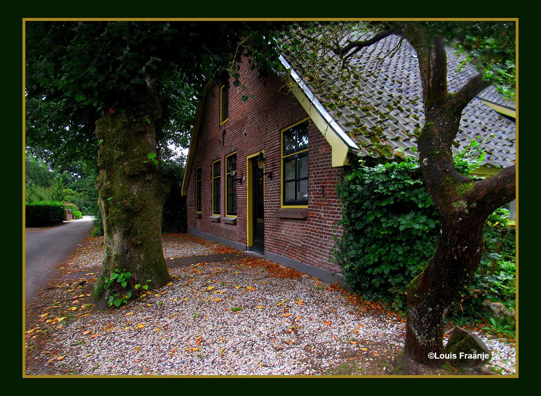Een romantisch plekje, dat een beetje verscholen ligt onder de bomen - Foto: ©Louis Fraanje