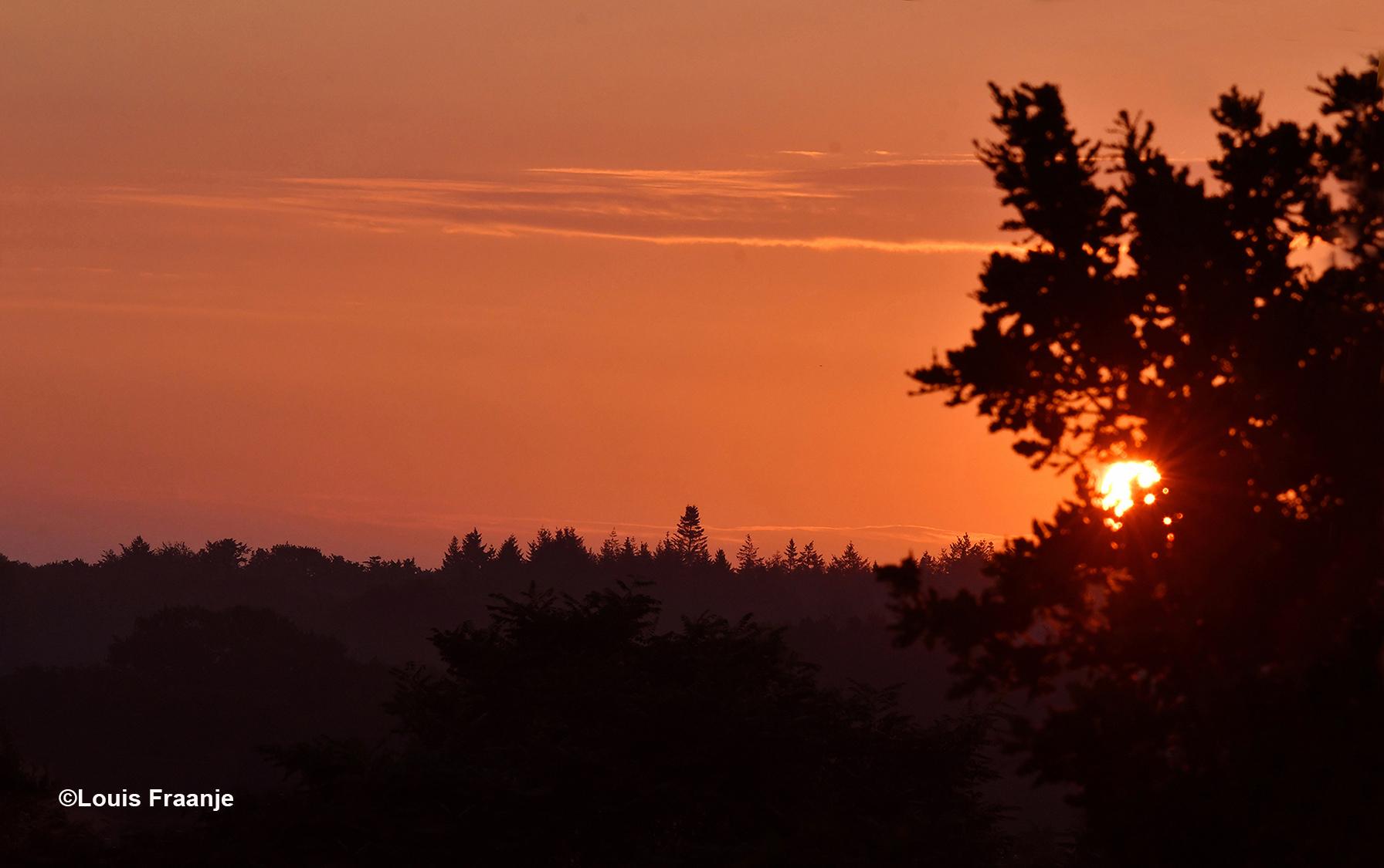 Vanmorgen om 06.15 uur scheen de zon ons dwars door de bomen tegemoet - Foto: ©Louis Fraanje