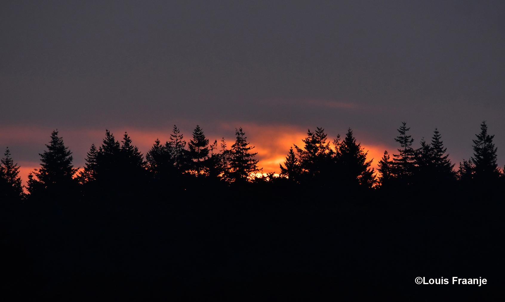 Kortstondig ochtendgloren - Foto: ©Louis Fraanje