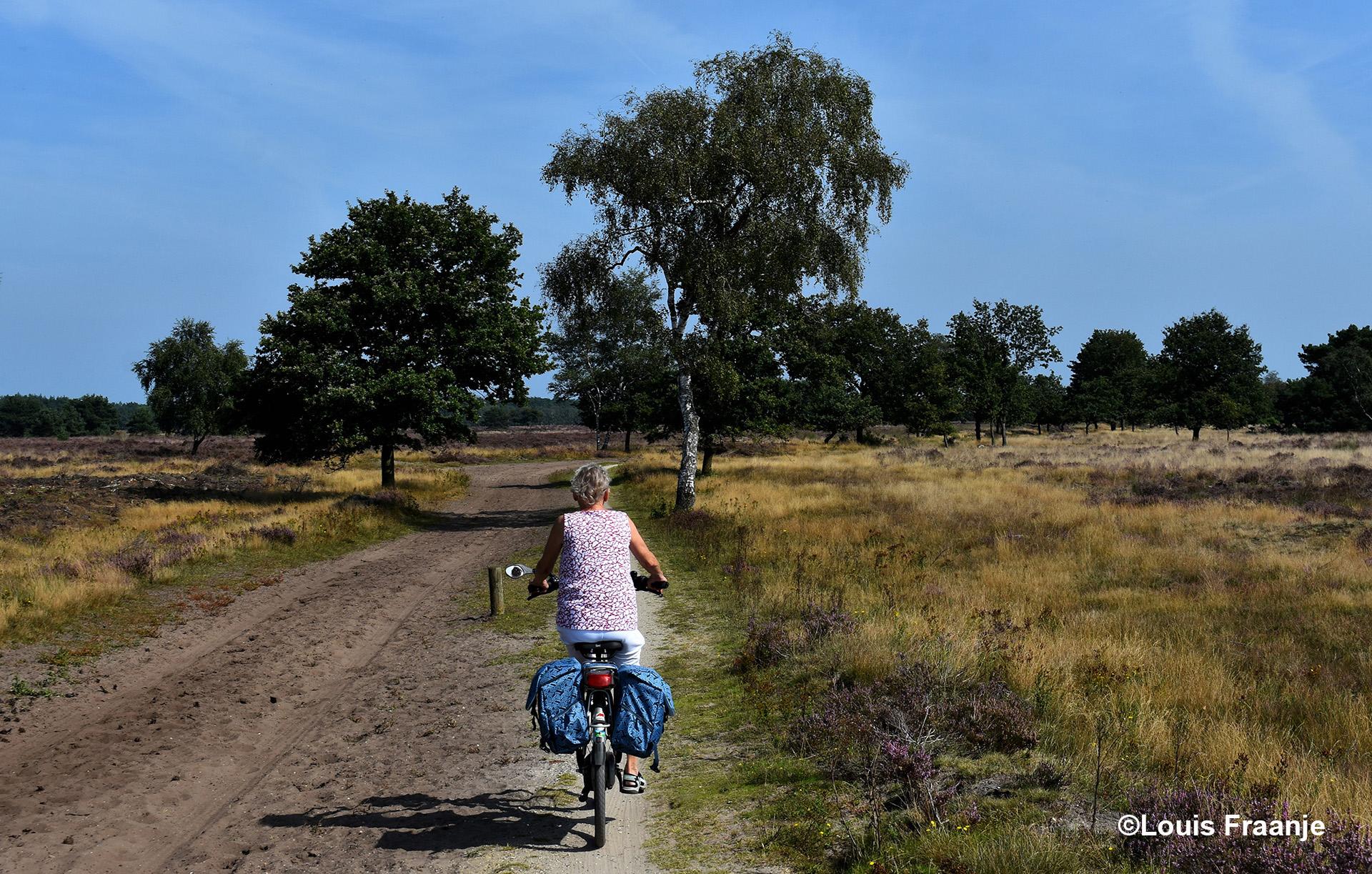 Wat meer richting Kootwijk begint de begroeiing - Foto: ©Louis Fraanje