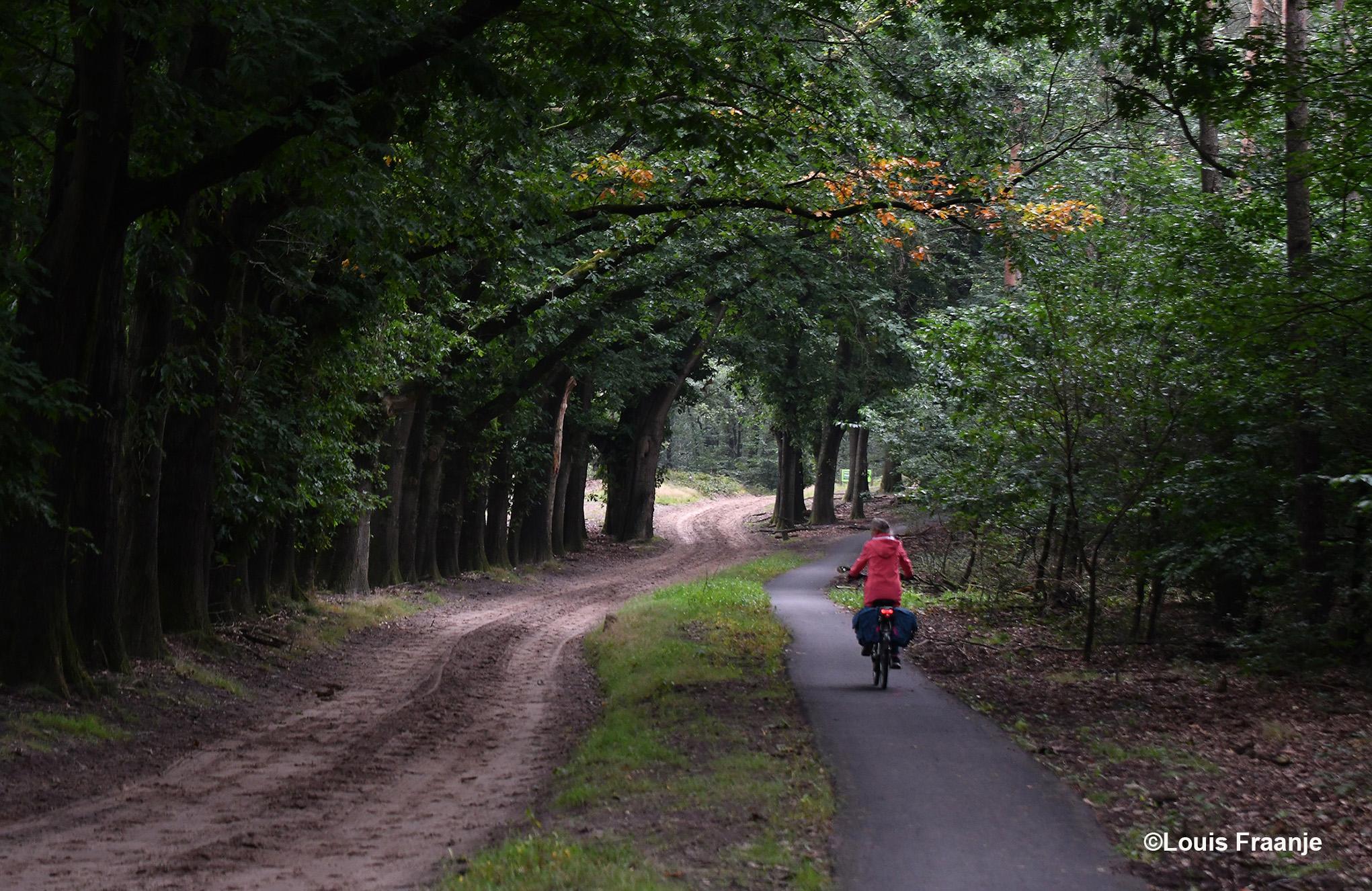 En verder gaat het weer over de Planken Wambuisweg - Foto: ©Louis Fraanje