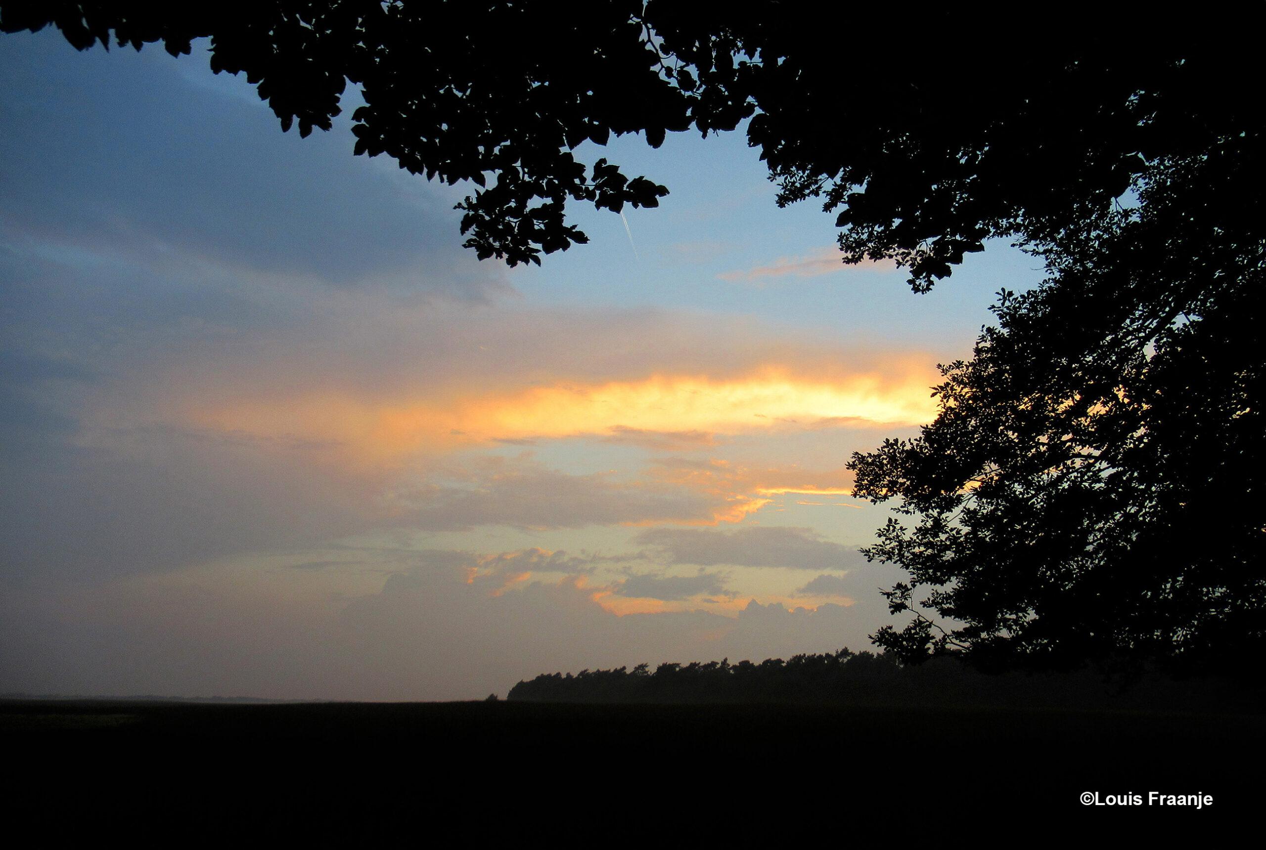 Een kleurrijke avondhemel boven bos en veld op de Hoge Veluwe - Foto: ©Louis Fraanje