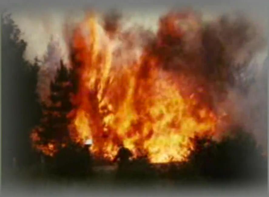De enorme bosbrand in 1976 - Screenshot uit de film