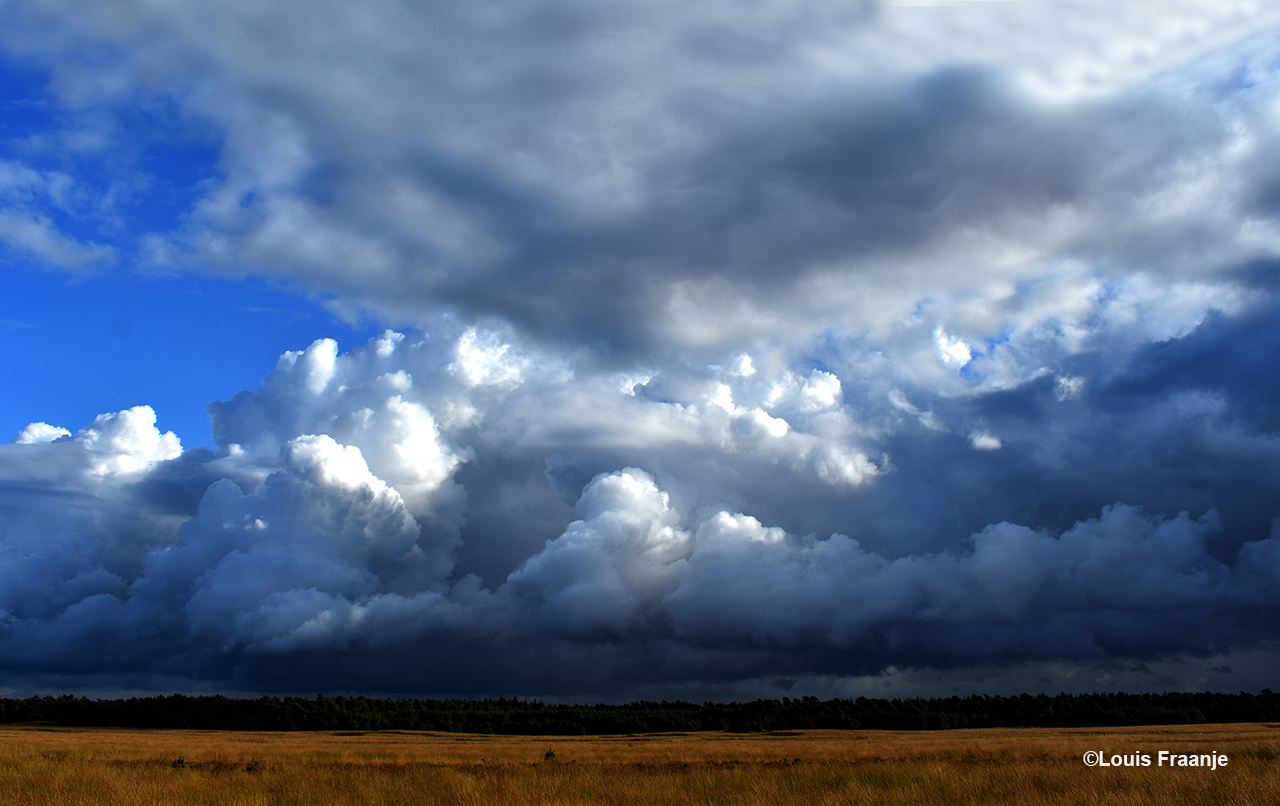 Een schitterend schouwspel op met enorme rolwolken aan de hemel boven het Reemsterveld - Foto: ©Louis Fraanje