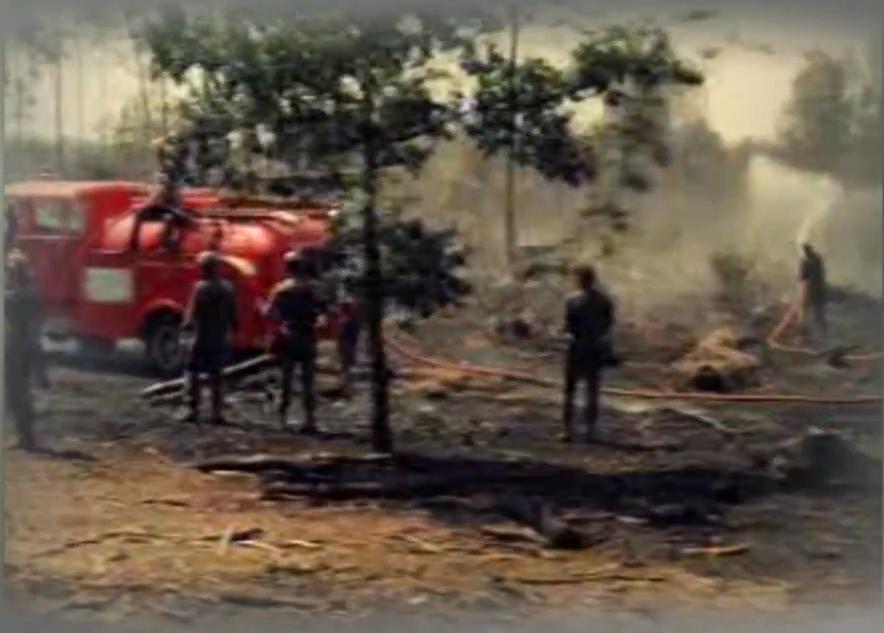 Een trist resultaat van de enorme bosbrand in 1976 - Screenshot uit de film